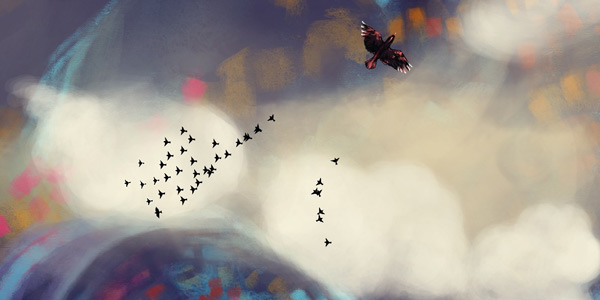 a flock of birds in Apsis